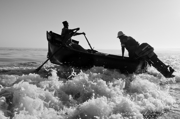 West Coast Rock Lobster fishers rowing to sea by wildlife and conservation photographer Peter Chadwick