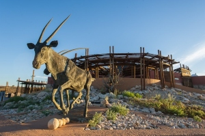Kgalagadi Transfronteir Park by wildlife and conservation photographer Peter Chadwick.