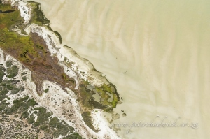 Aerial view of langebaan lagoon by wildlife and conservation photographer Peter Chadwick.jpg