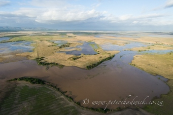 Agulhas plain flooding by wildlife and conservation photographer Peter Chadwick.jpg
