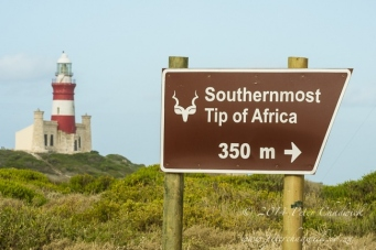 Southernmost tip of Africa by wildlife and conservation photographer Peter Chadwick.jpg